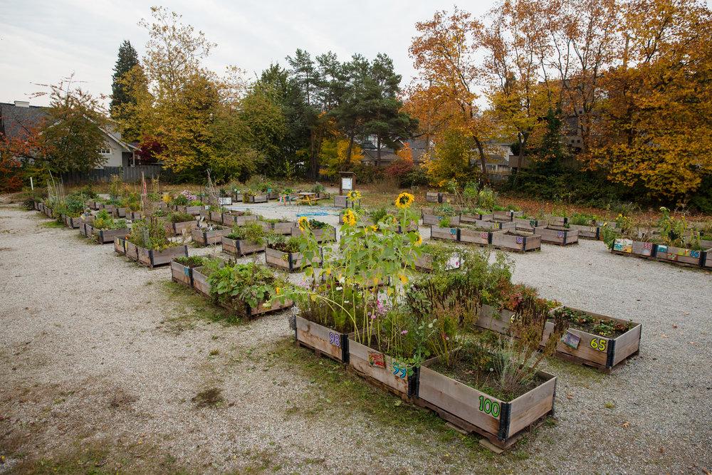 Gardens-38.jpg
