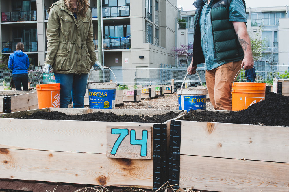 Shifting_Growth_Raised_Garden Beds_Community_Garden_Vancouver - South_False_Creek_Garden - 23.jpg