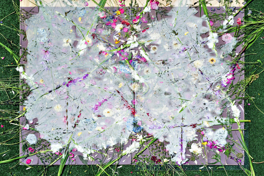 image7-4-1920x1280.jpg