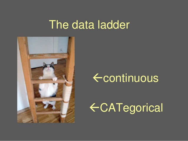 "A slide from Jennifer LaFleur's 2016 NICAR lightning talk, ""Cats and Stats."" View the  full talk  or  slide deck ."