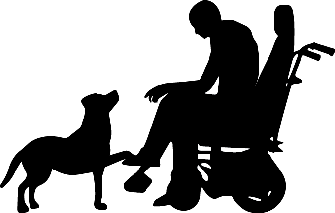 This is michael and indy. - Michael is a law student at SU Law for disability law.He took me through his daily routine in his apartment building, his commute to the law school, and his usual path through the building.Michael has Indy to help him with many of his daily tasks because he has very limited arm mobility.