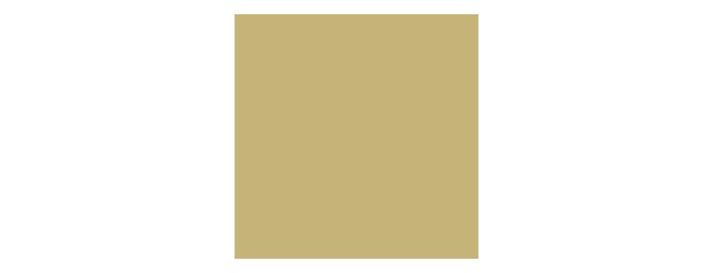 F6 logo gull copy 2.png