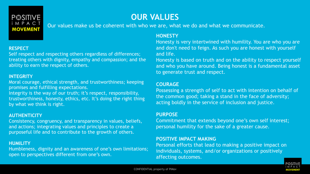 PiMov PiMakers VALUES