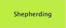 shepherding.png