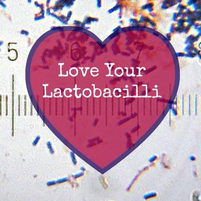 800px-20101212_200110_LactobacillusAcidophilus