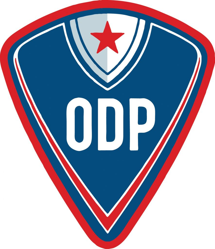 Michigan ODP