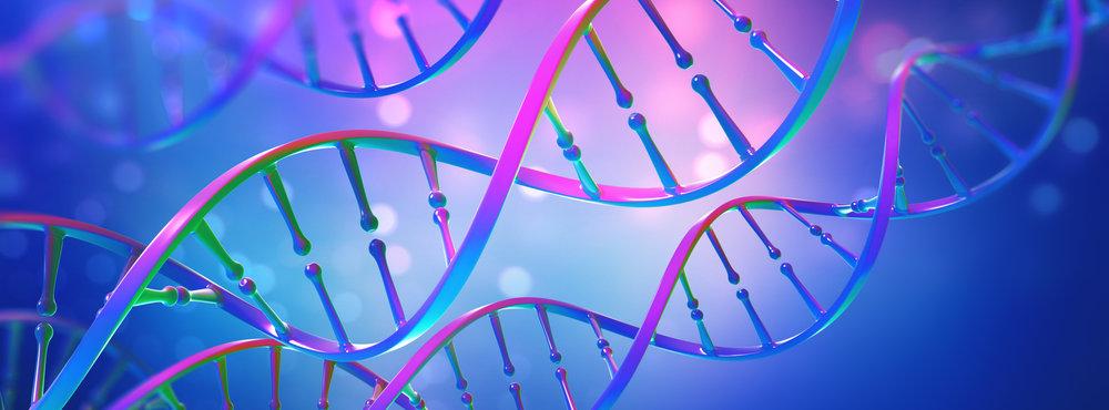 Cellular Memory Body Process Regina | Cellular Memory Body Process Weyburn | Roberta Lynn