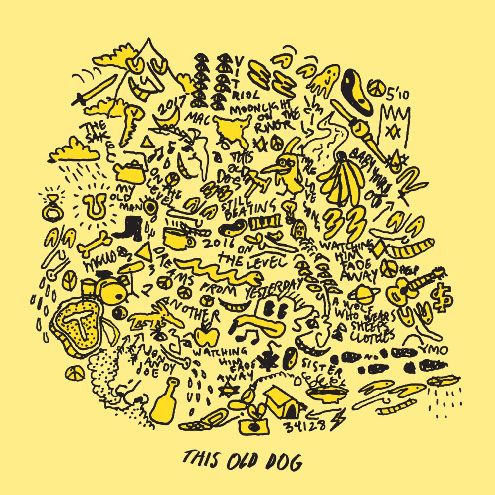 24. This Old Dog - Mac DeMarco