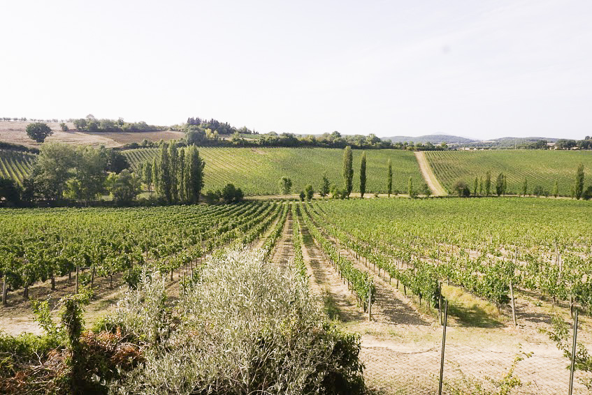 Stunning views of vineyards surrounded us at Relais Ortaglia.