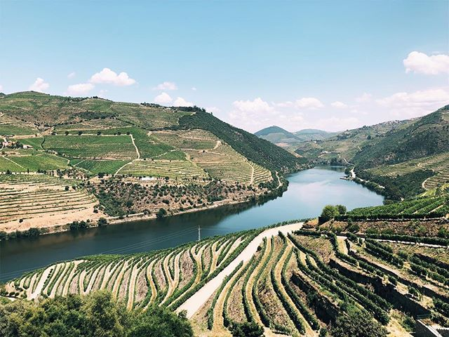 The dreamiest of all wine countries? I think so. Have you been to Douro Valley? . . . . #dourovalley #douroriver #ilovedouro #travelblogger #roamtheplanet #femaletravelbloggers #dametraveler #tinyatlas #wandertheworld #portugal🇵🇹 #igportugal #dourowine #culturetrip #tlpicks #beautifuldestinations #athomeintheworld #sonyalpha #sonya6000 #outofoffice #travelinspiration #wanderlust #suitcasetravels