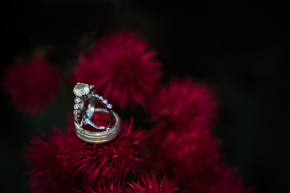 wedding rings on red plant