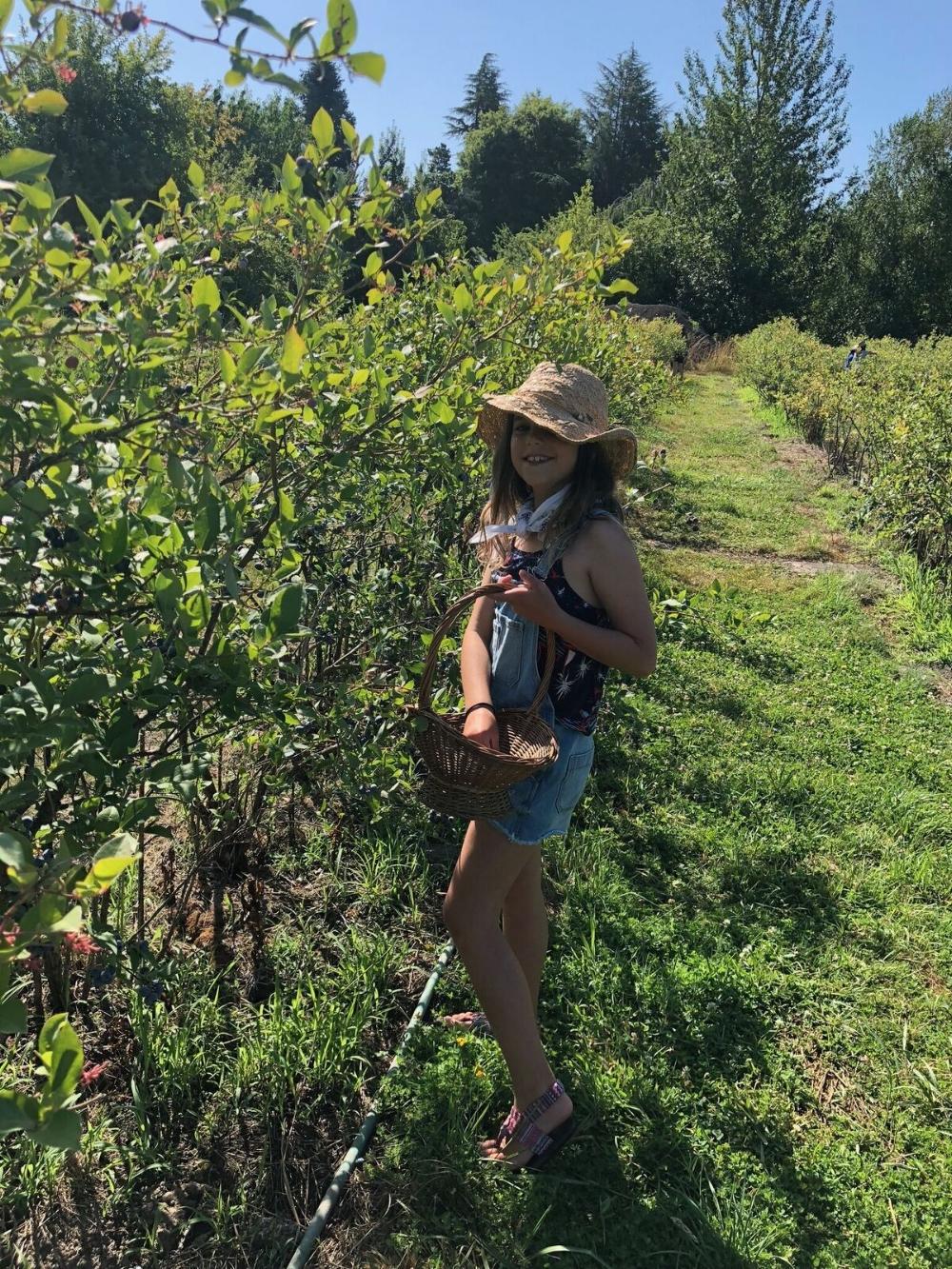 Croft Farm-blueberry picking.jpg