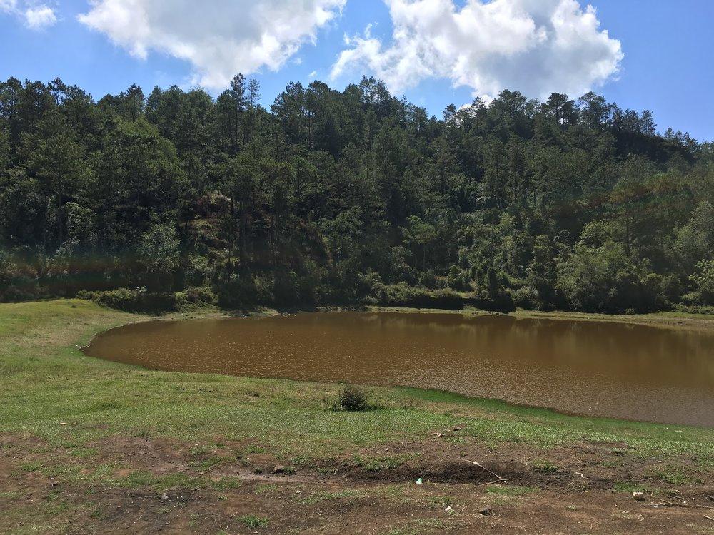 Lake Danum.