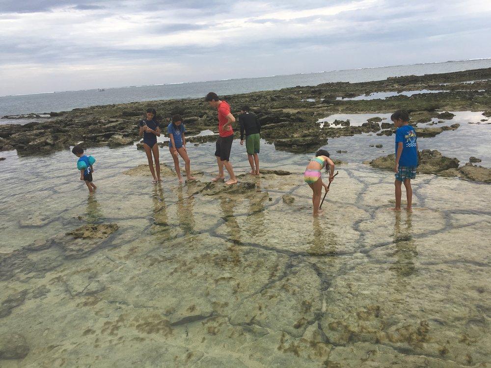 Exploring tidal pools at Guyam Island