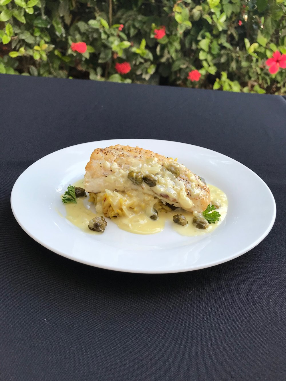 Pan Seared Snook  - Fresh caught snook fillet served on a bed of orzo rice with creamy garlic caper sauce