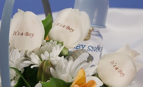 ALL OCCASIONS - Birthday bouquets, birth of baby gifts and flowers, get well soon flowers of cheer