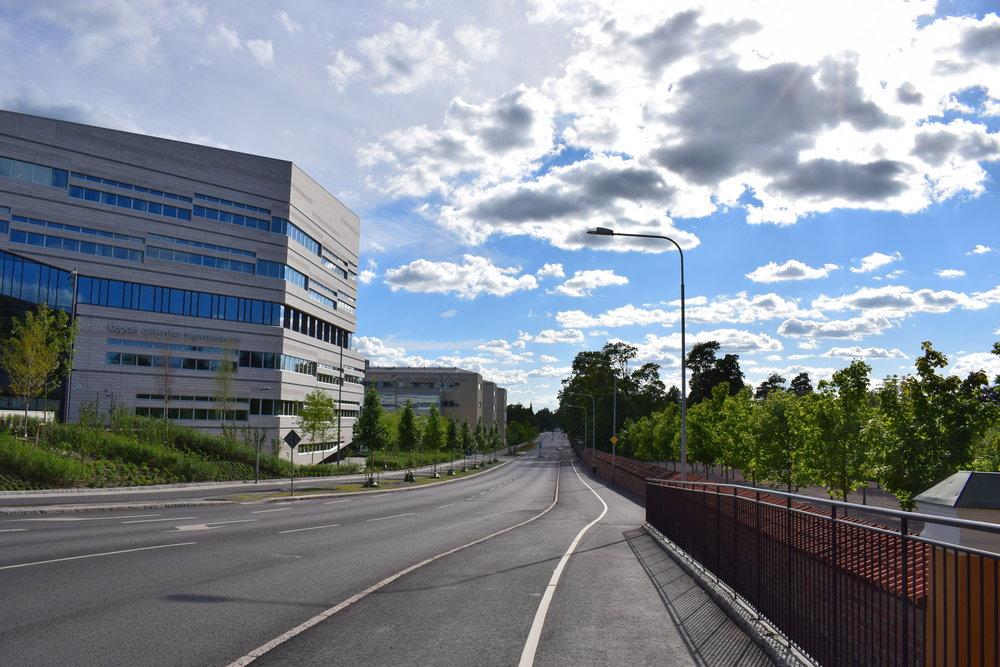 Uppsala University, View over the city