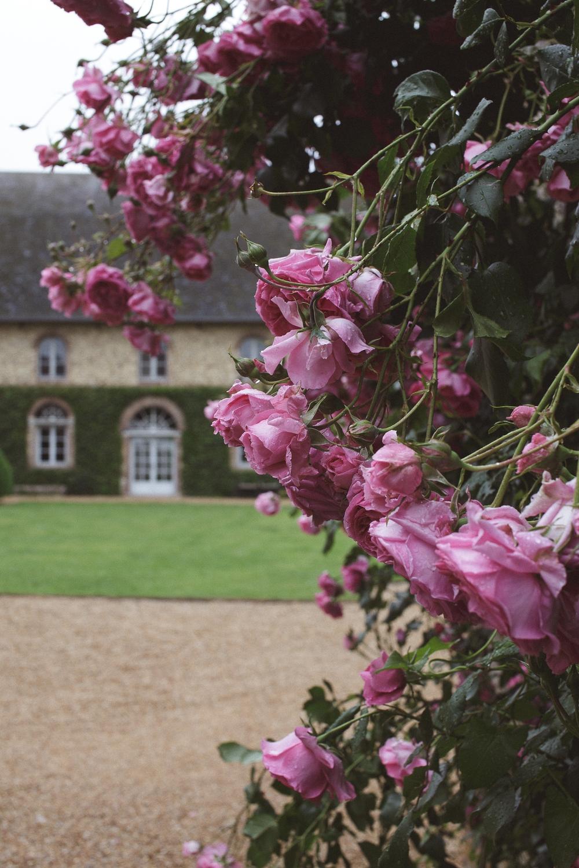 mariage champetre au Domaine des Evis La Femme Gribouillage (3).jpg