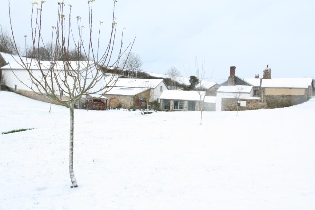 upcott farm snowy paddock