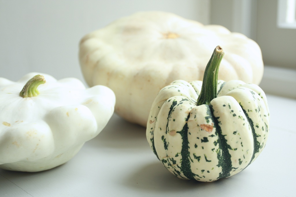 upcott farm squash