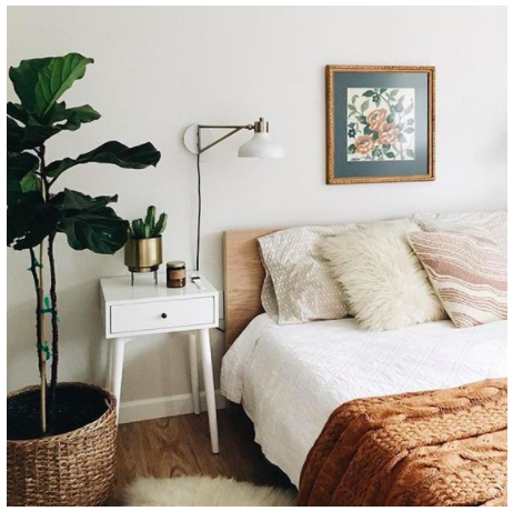 bedroom with fig tree and orange bedding