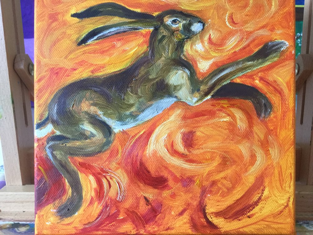 Hare in Orange Light
