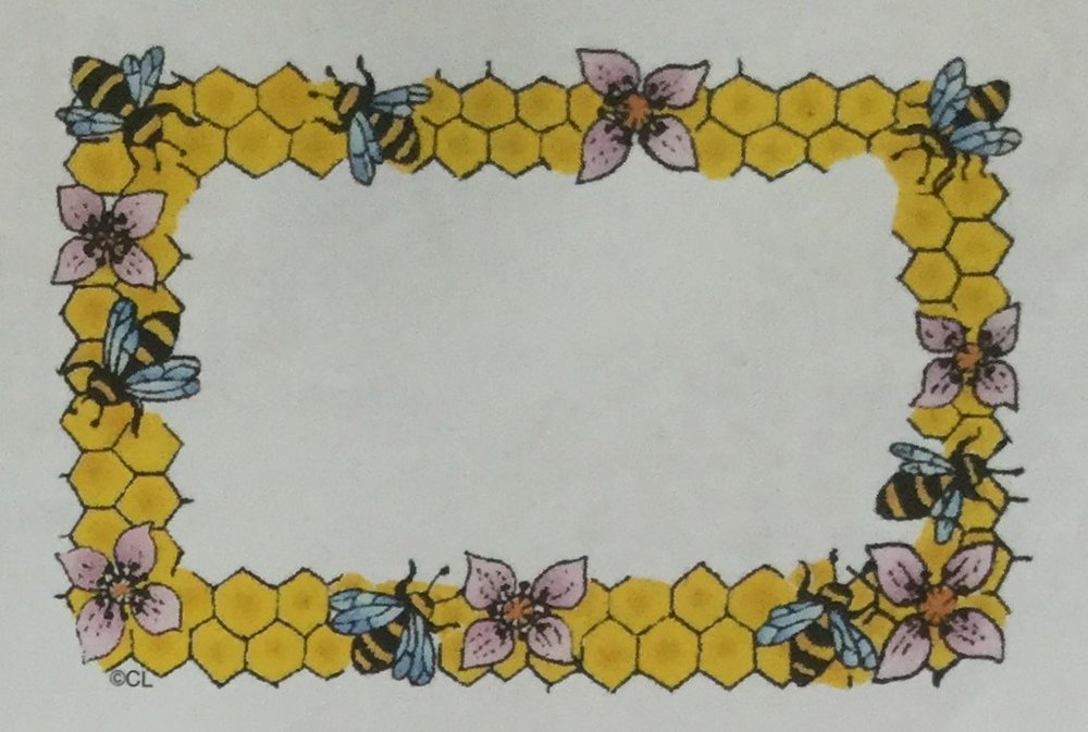 Honeycomb Border