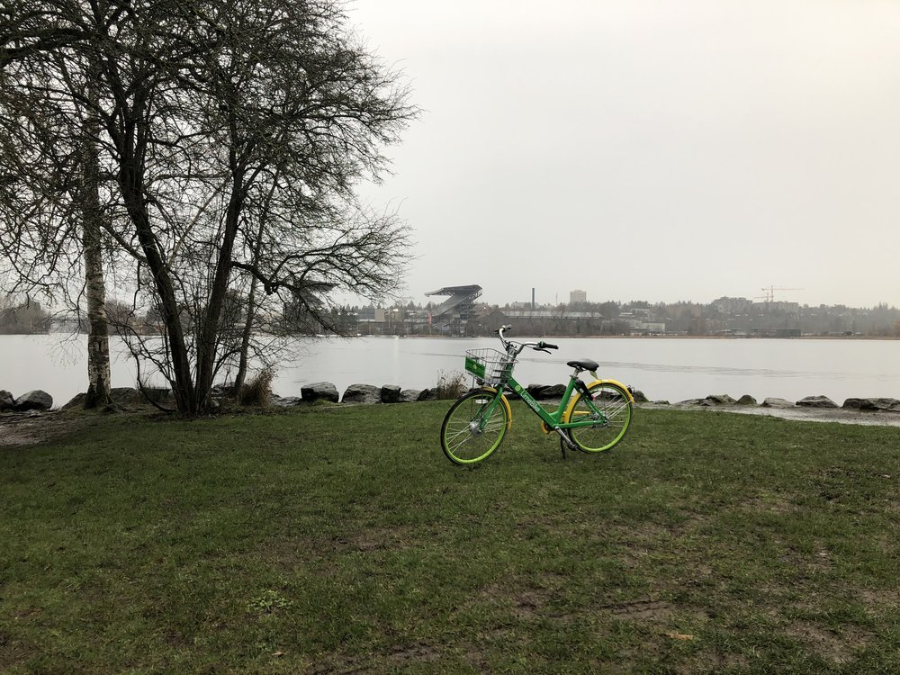 Who parks a Lime Bike way out at the end of a deserted peninsula in a rainstorm? Seriously, who does that?