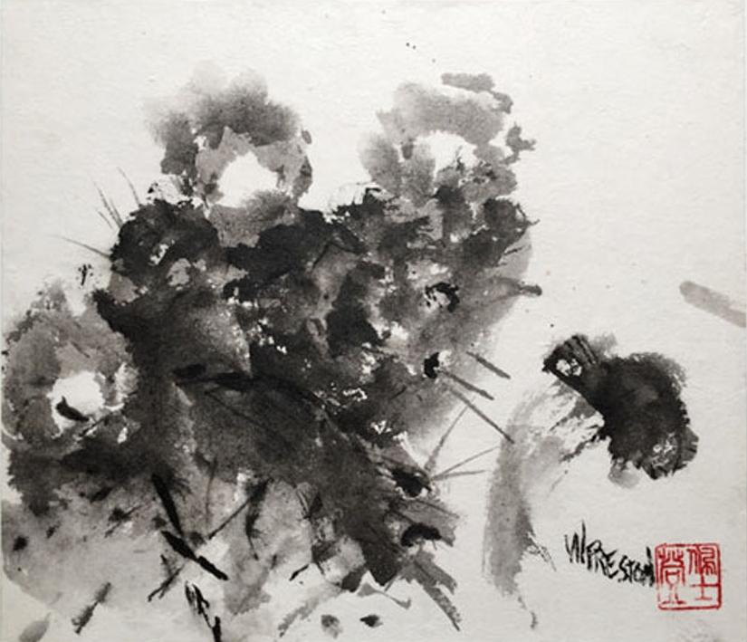 """Cactus Moth- Sumi8x10""""im on 9x12"""" cradled panel  $300"""