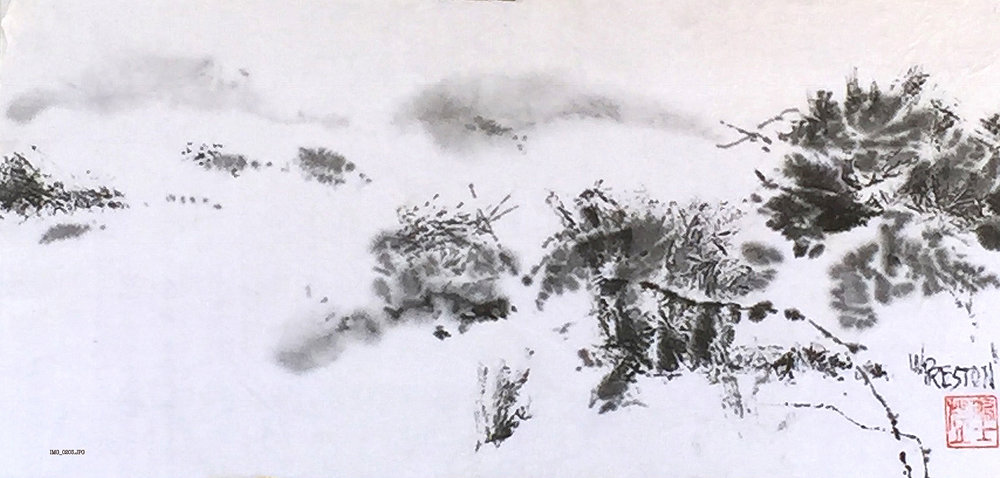Memory of Snow in the Desert - 7.5x17 -350.