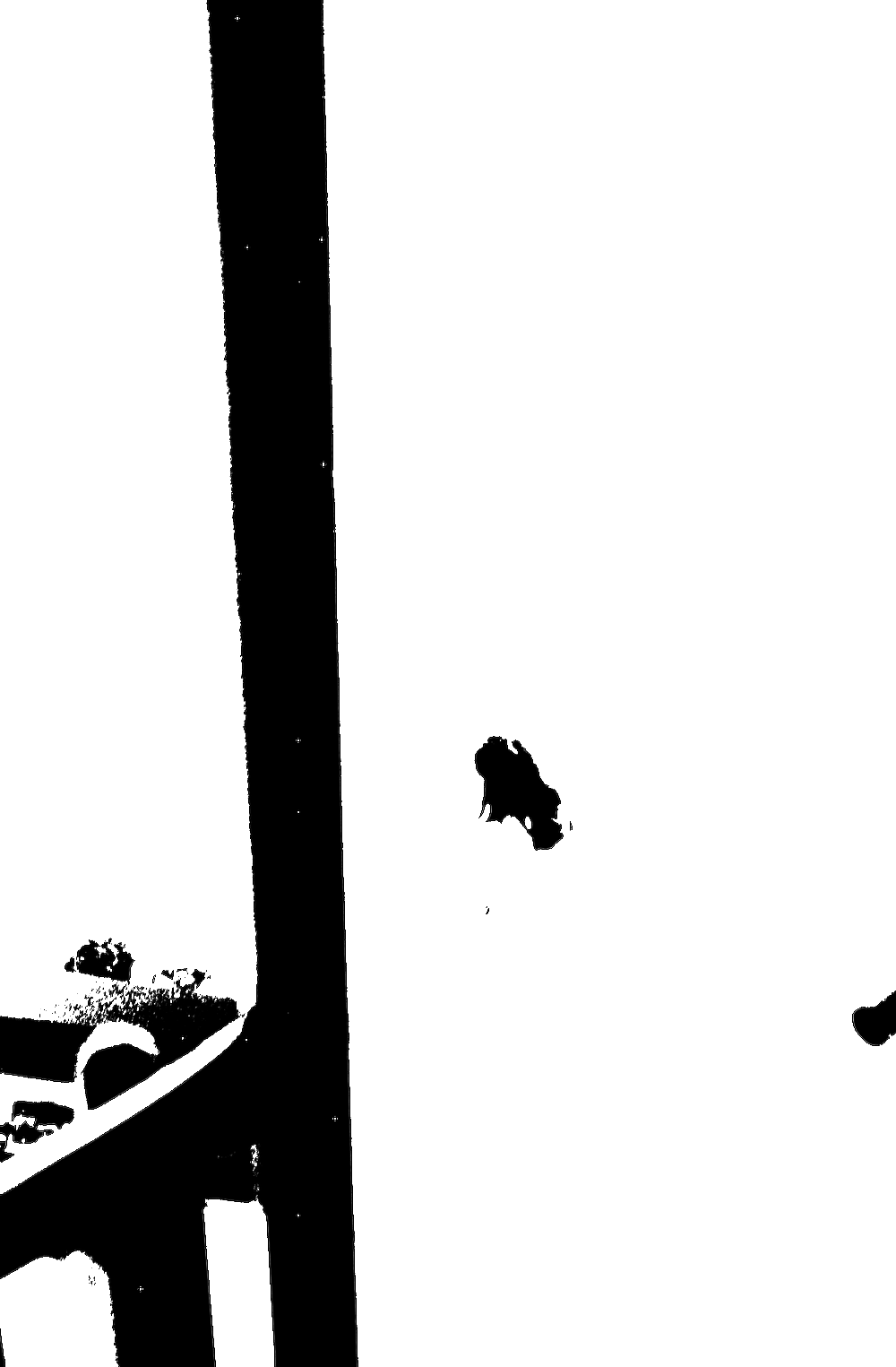 07_2018_080.png
