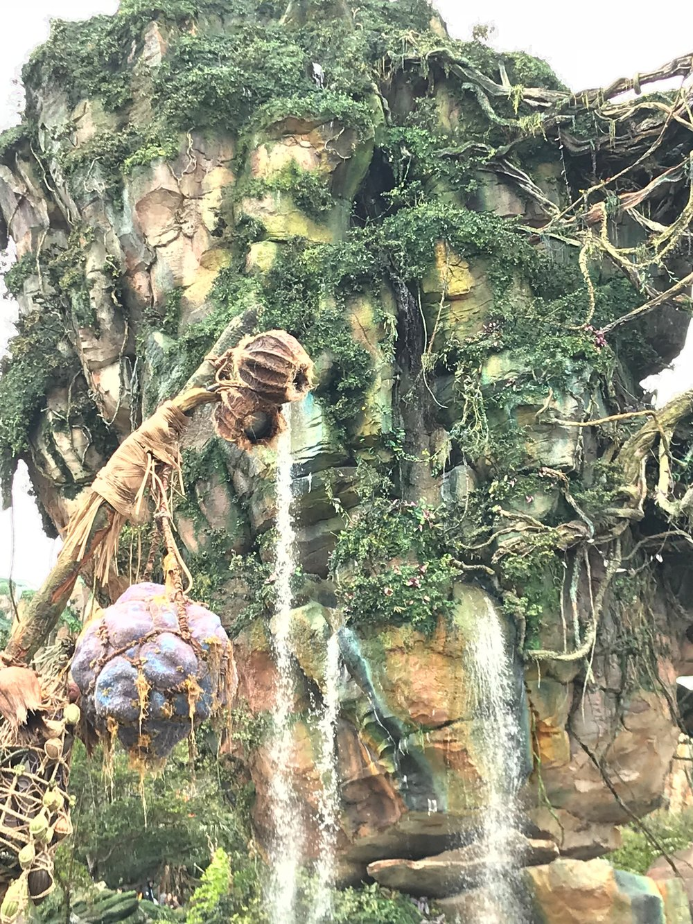 A picture from our visit at disney - it's the new pandora at animal kingdom