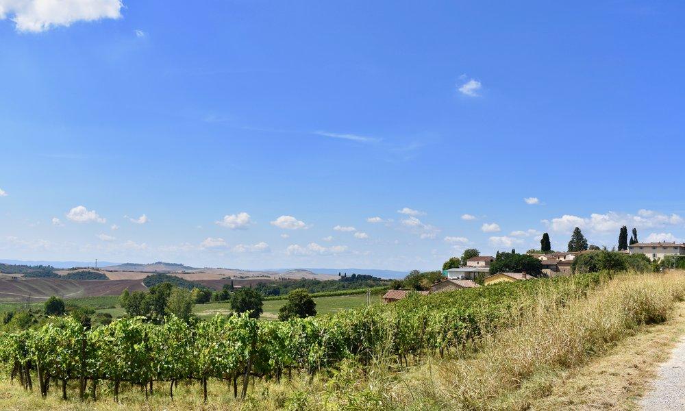 A Bike Ride In Tuscany