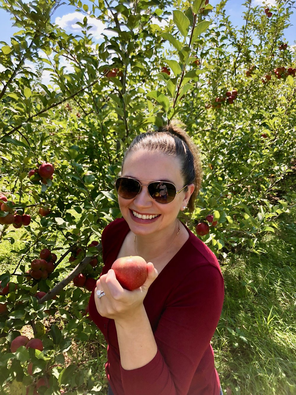 Apple Picking at Macintosh Fruit Farm