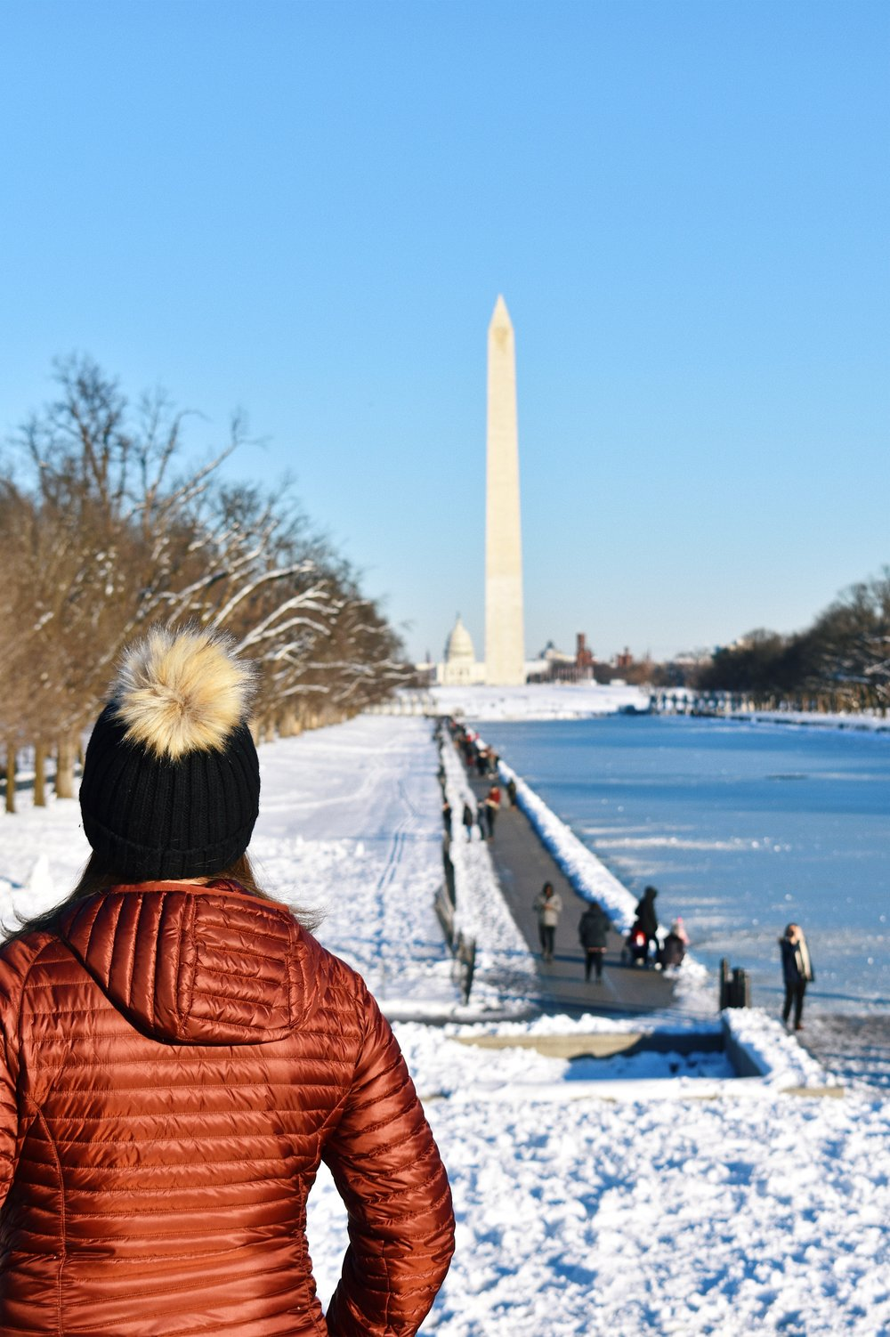 Snow Day in Washington D.C.