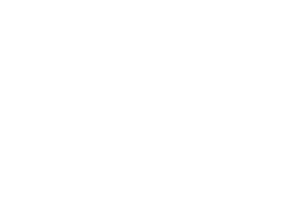 Cultural Arts Coalition