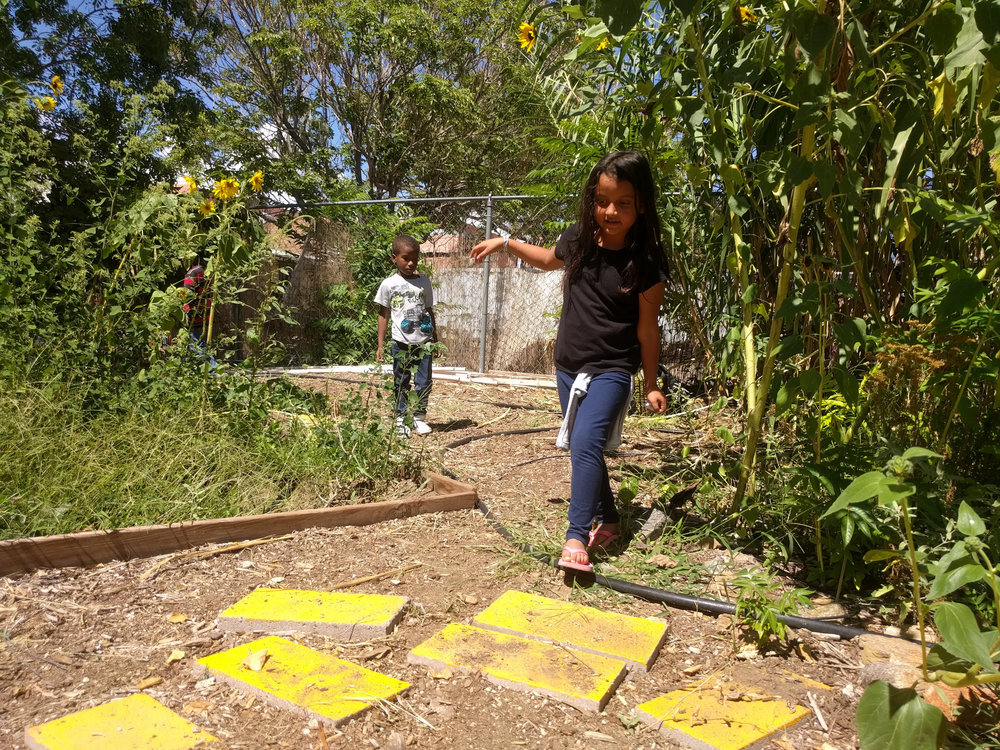 usbc-garden-yellow-road.jpg