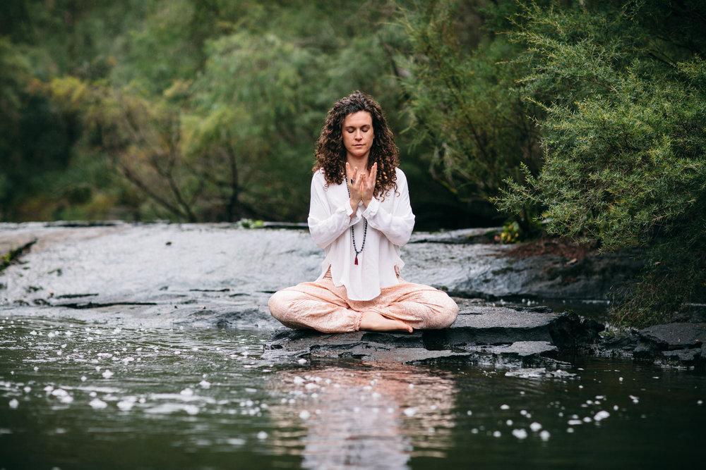 yogi-24.jpg