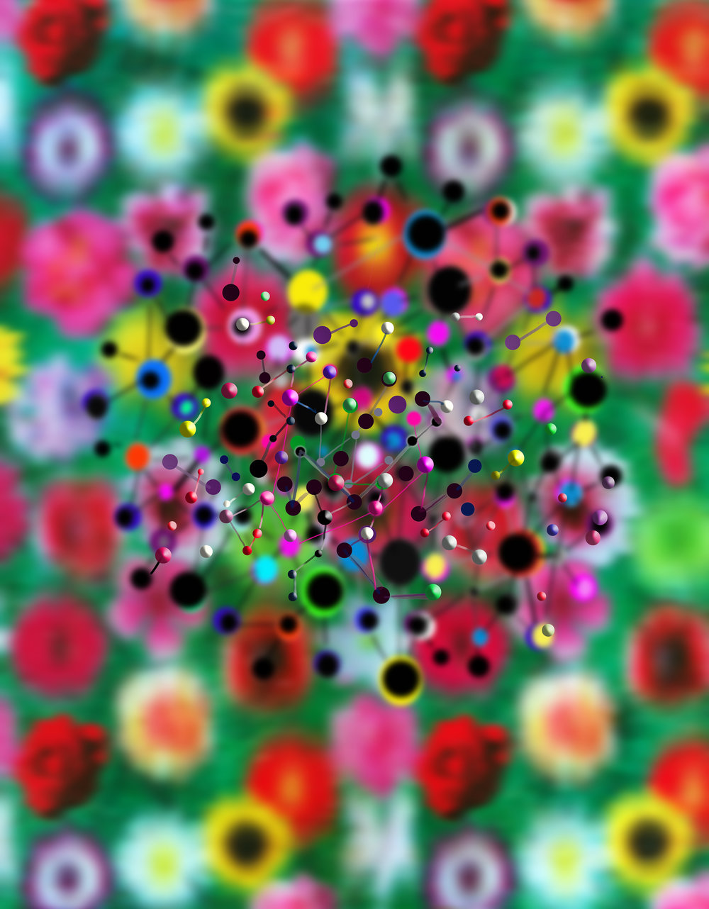 02 Floral molecular-2 .jpg
