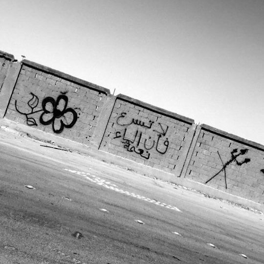 """الرياض - Riyadh  #saudistreetart - """"Don't speed, water is the secret of life"""""""