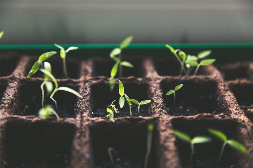 Micro-Farmer - Less than 1 hour per week