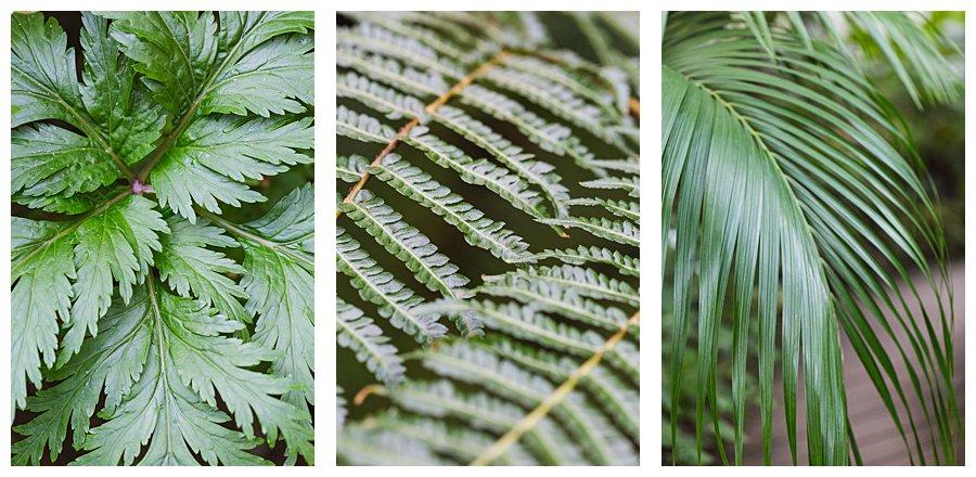 Instameet Oxford Botanical Garden-9369.jpg