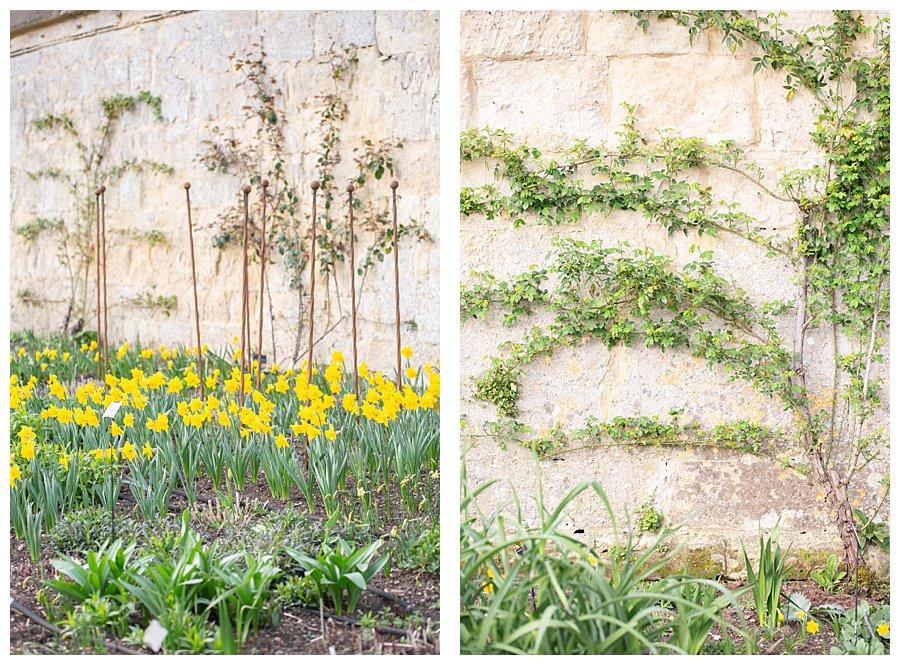 Instameet Oxford Botanical Garden-9436.jpg