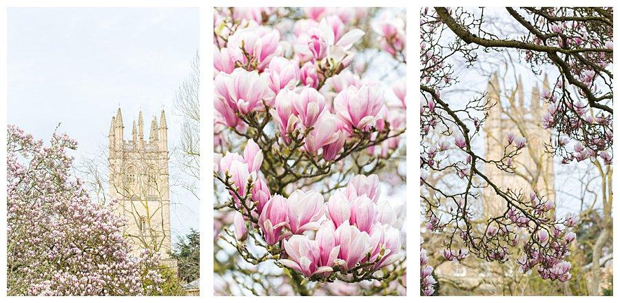 Instameet Oxford Botanical Garden-9448.jpg