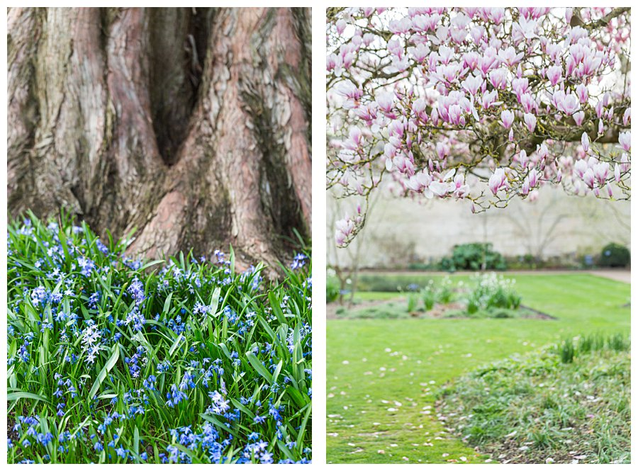 Instameet Oxford Botanical Garden-9431-1.jpg