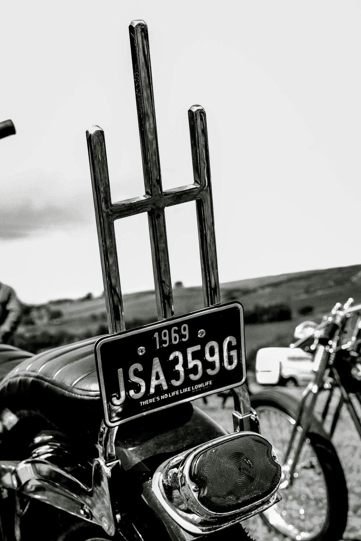 harley-8568.jpg