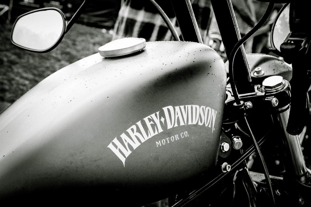 harley-8688.jpg