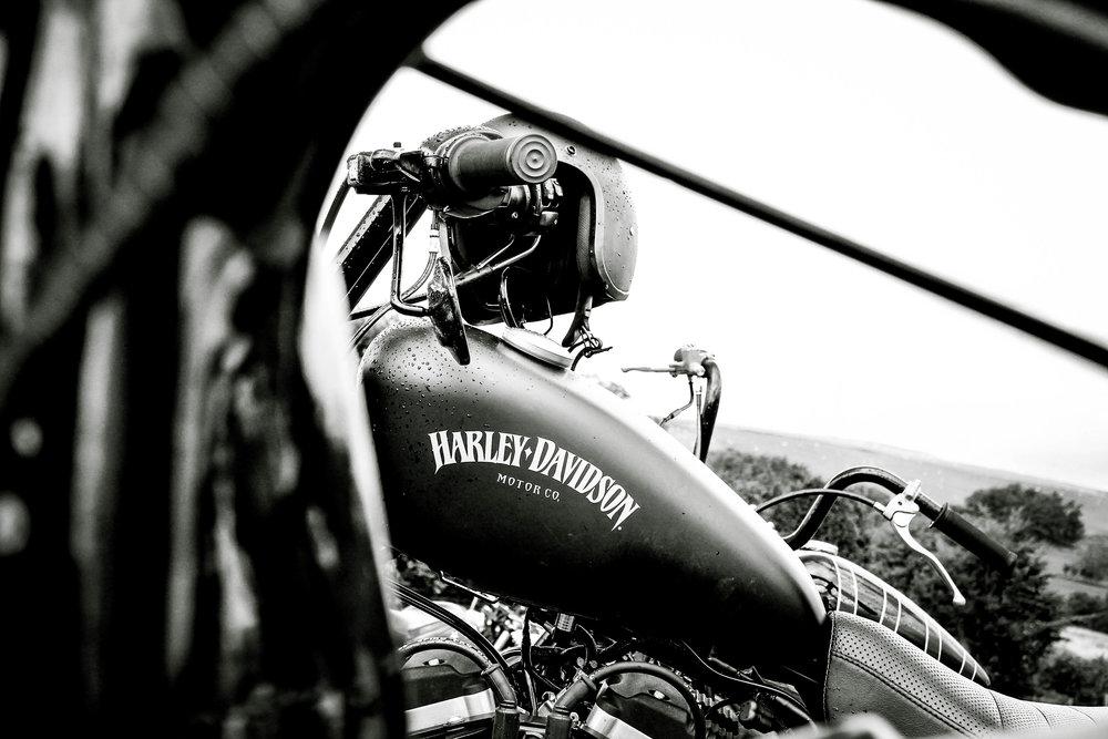harley-8703.jpg