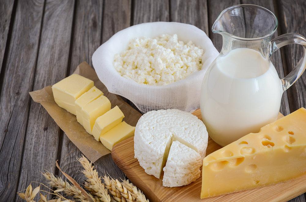 dairy -