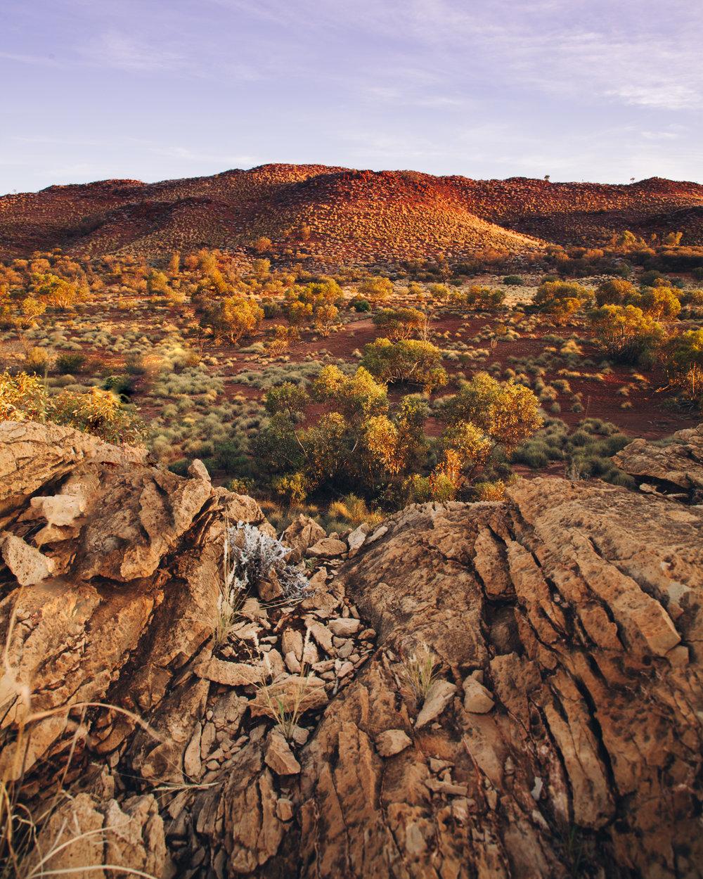 Alice Springs (26 of 71).jpg